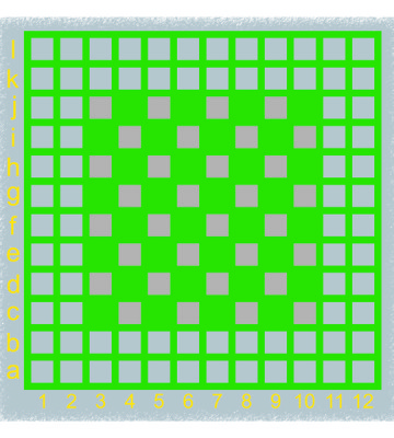 Co-ordinate Grid & Chess