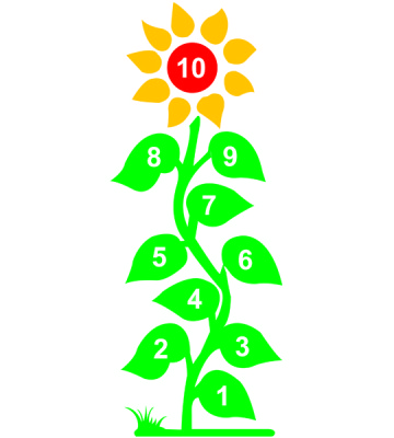 Hopscotch Sun Flower 1 - 10