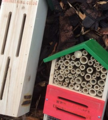 Insect Houses